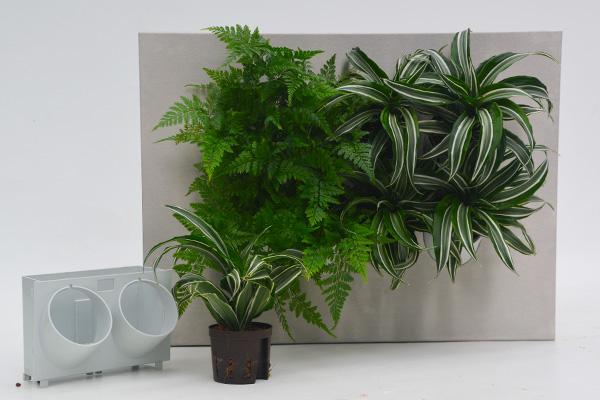 Pflanzsystem grüne Bilder Baukastensystem