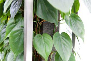 Detailaufnahmen Rahmen Planted ED Paravent