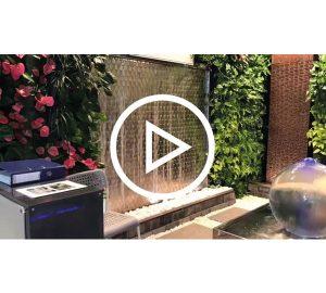 Beitragsbild Video Gruene Waende