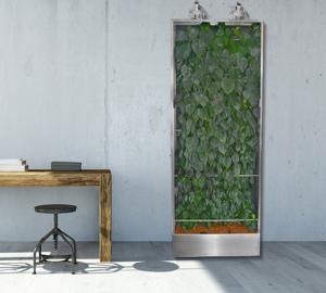Beitragsbild Green Boards