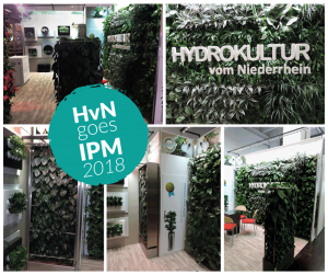 Beitragsbild IPM 2018